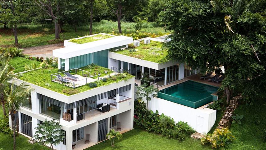 Maison toit vegetal fabulous agrandir projet un toit for Maison avec toit vegetal